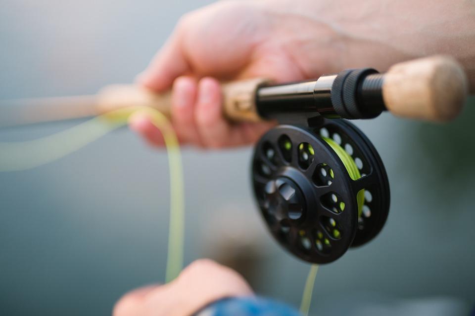 Les vertus de la pêche.